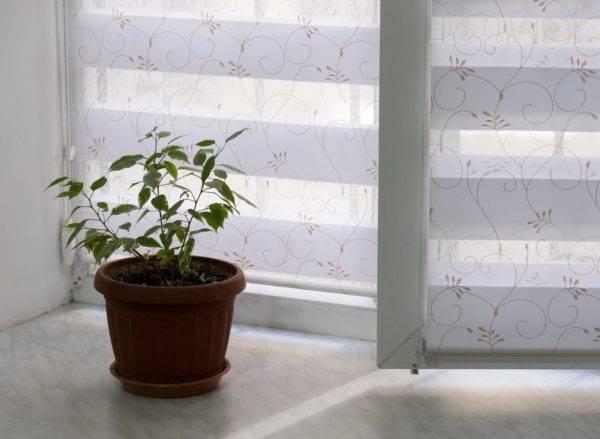 Пример работ Рулонные шторы Зебра 1